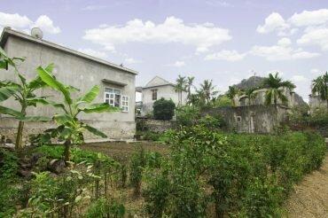 Yen_Duc_village_gallery_Homestay_garden